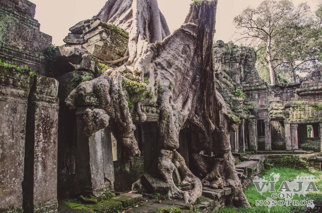 Guía para visitar Angkor. Circuito corto y largo