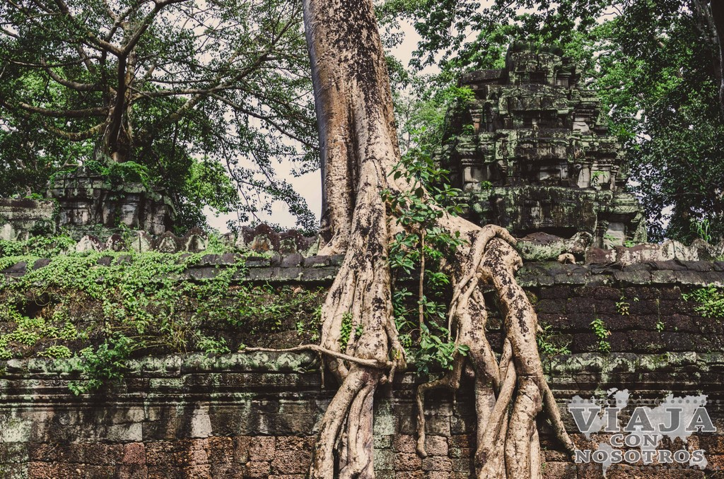 Lugares imprescindibles para ver en Siem Reap