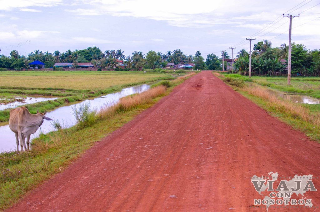 Visitar el Pueblo flotante Chong Kneas desde Siem Reap