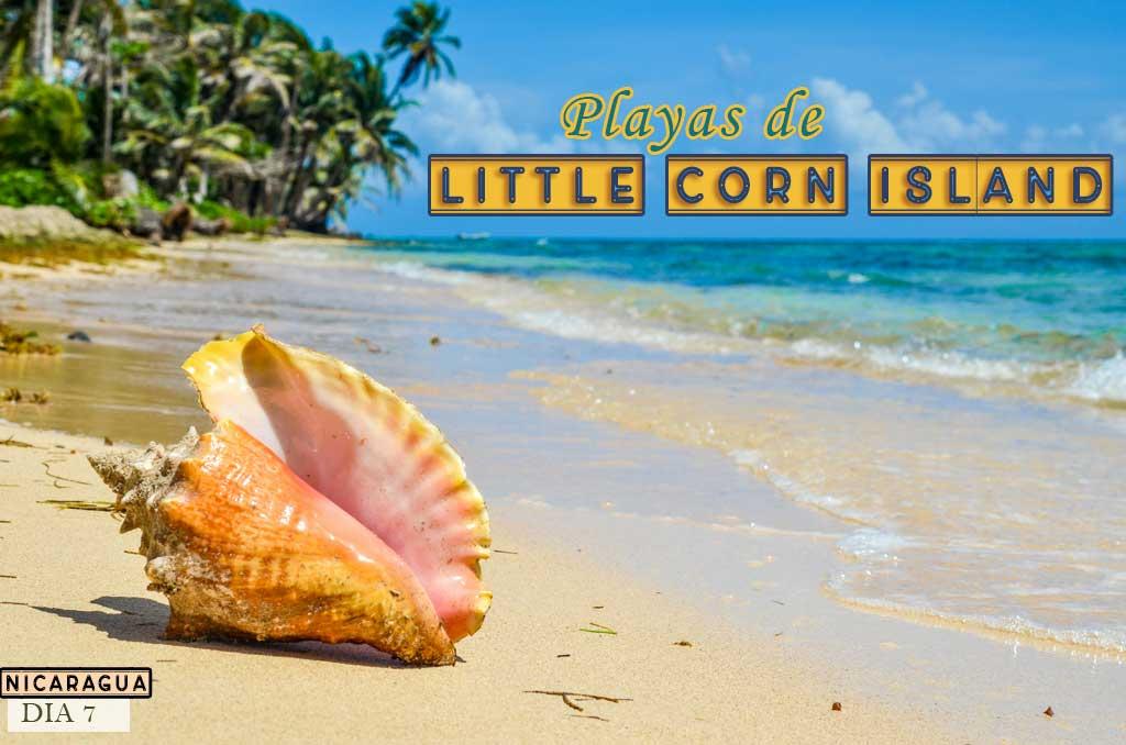 Que ver y que hacer tres días en Little Corn Island