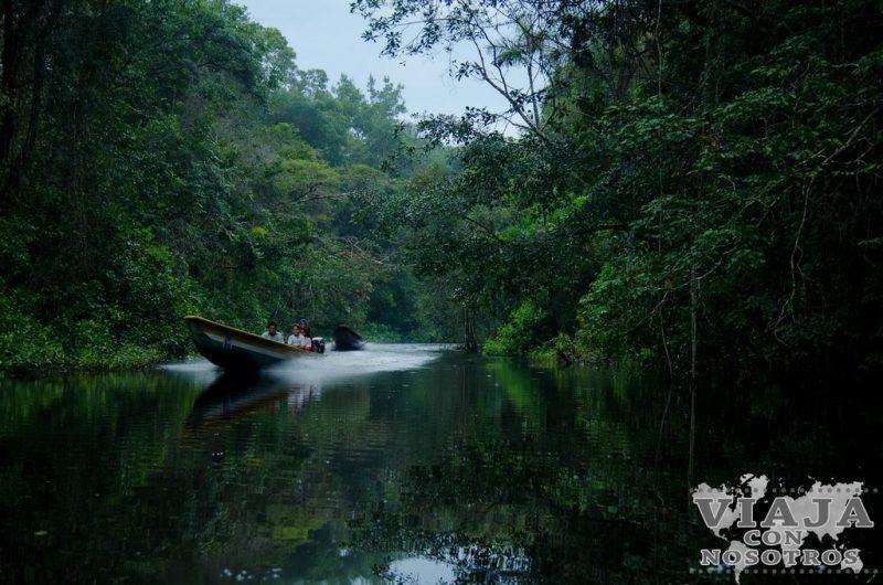 Lo que debes saber antes de visitar la Reserva de Cuyabeno