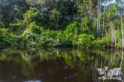 El mejor lugar para visitar el Amazonas de Ecuador