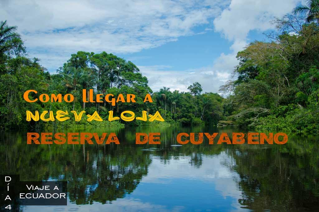 Contratar un tour en Nueva Loja para ir a la Reserva de Cuyabeno