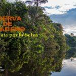 RESERVA DE CUYABENO: Caminata por la selva