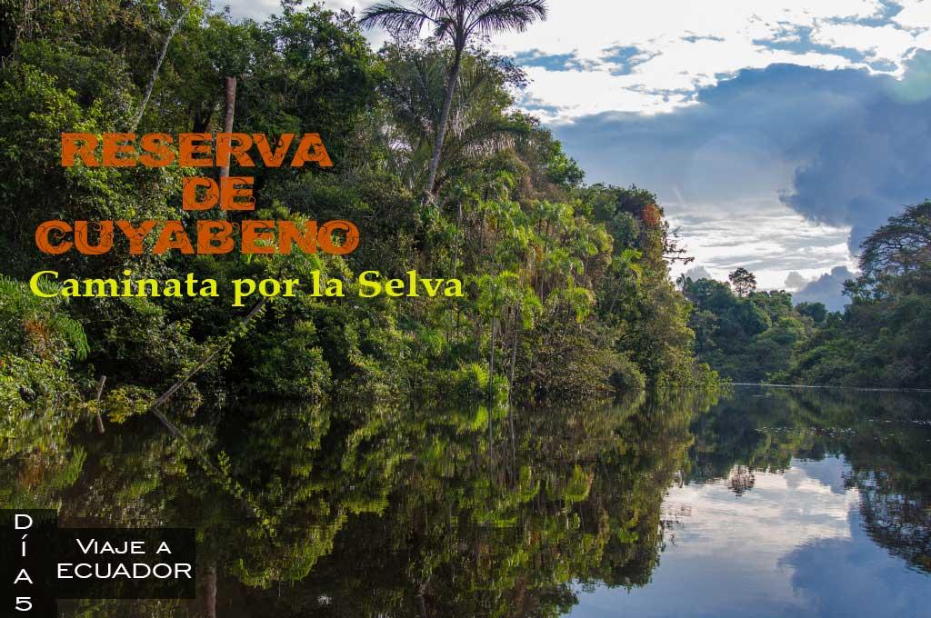 Tour de cuatro dias en la Reserva de Cuyabeno