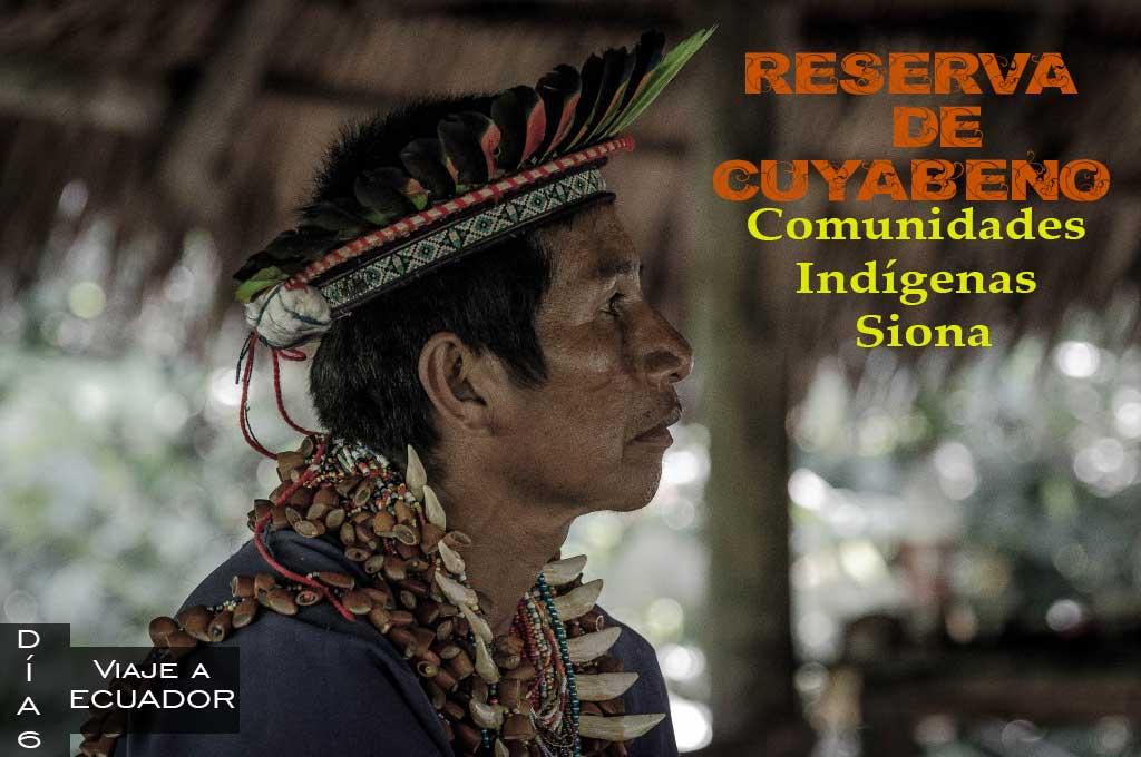Que actividades hacer en el tour de cuatro días en la Reserva de Cuyabeno.