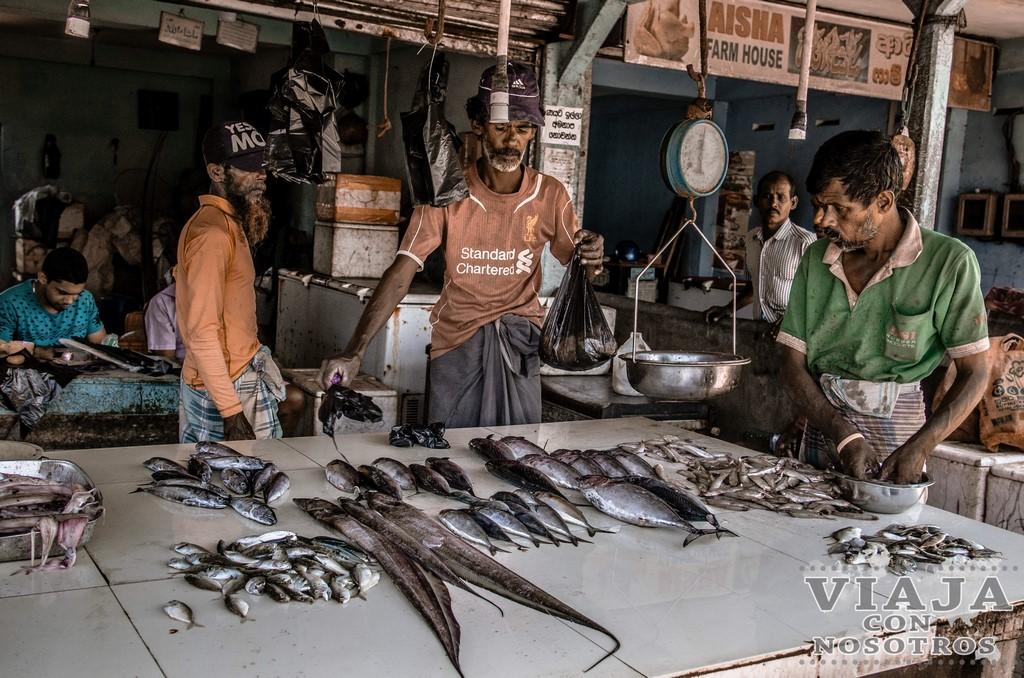 itinerario de viaje por libre a Sri Lanka