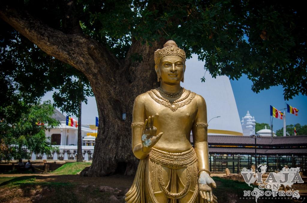 las mejores ofertas de hoteles en Sri Lanka