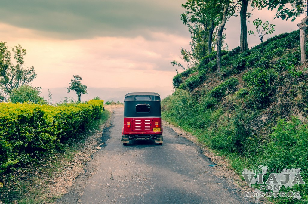 la mejor manera de moverse por Sri Lanka