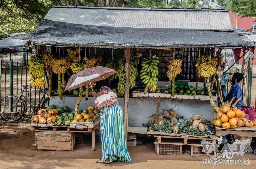 consejos para visitar Anuradhapura