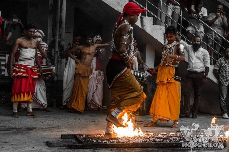 visitar Cultural Dance show Kandy