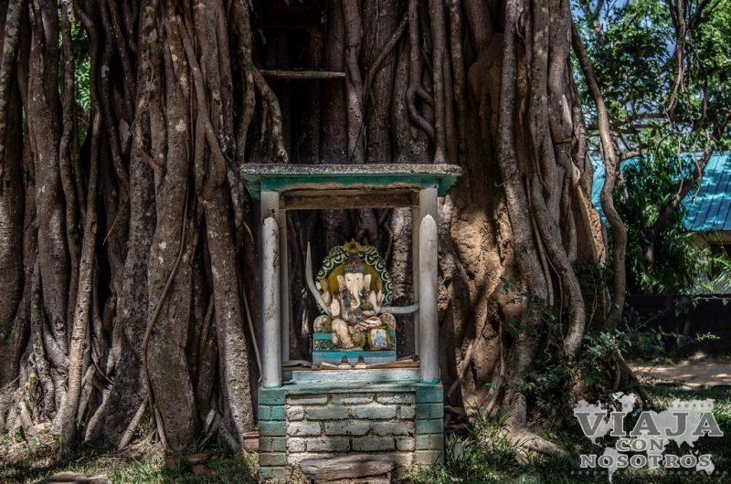 mejores fotos desde Piduurangala Rock