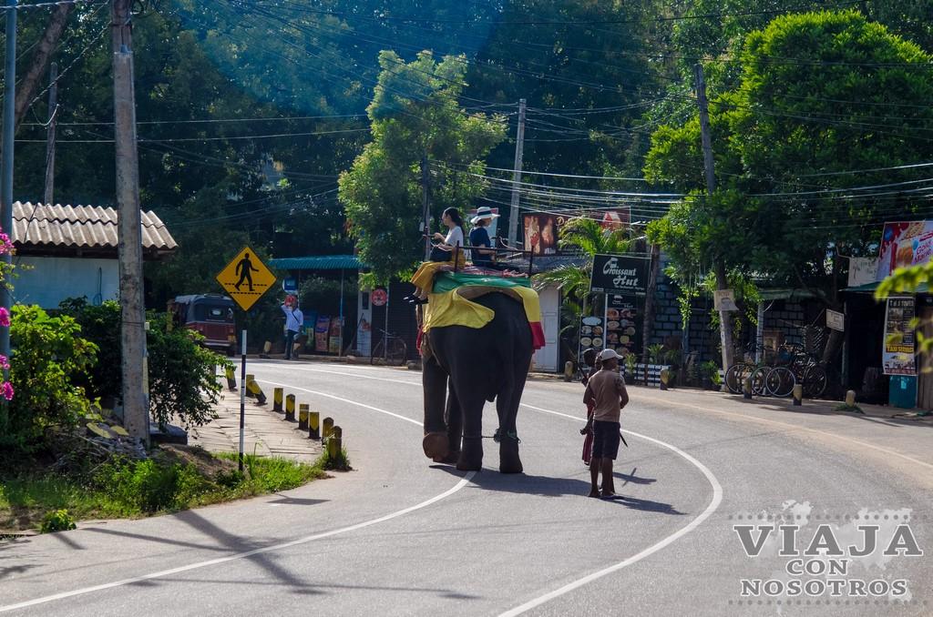 los mejores lugares que ver en Sigiriya