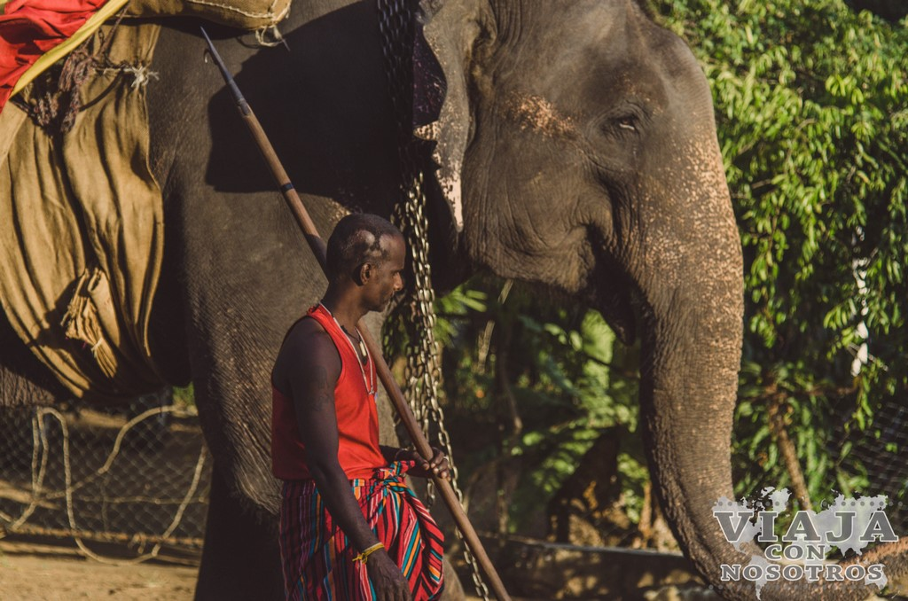 información completa para visitar Sigiriya