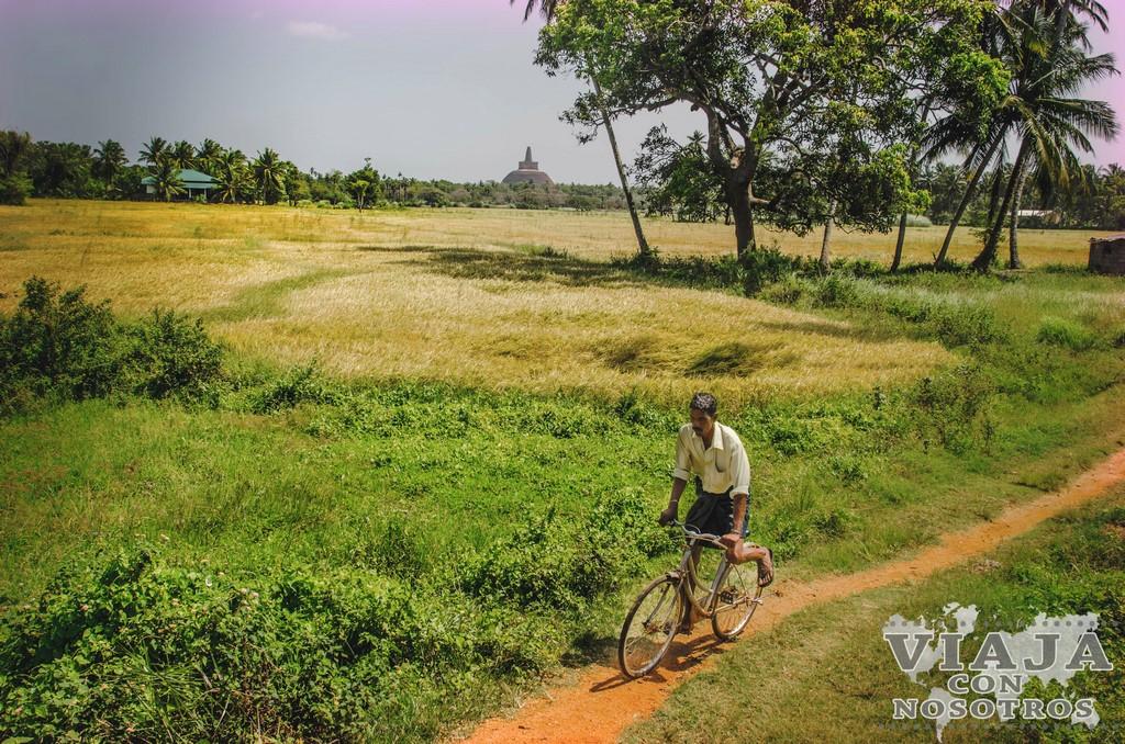 la mejor guia para visitar Anuradhapura
