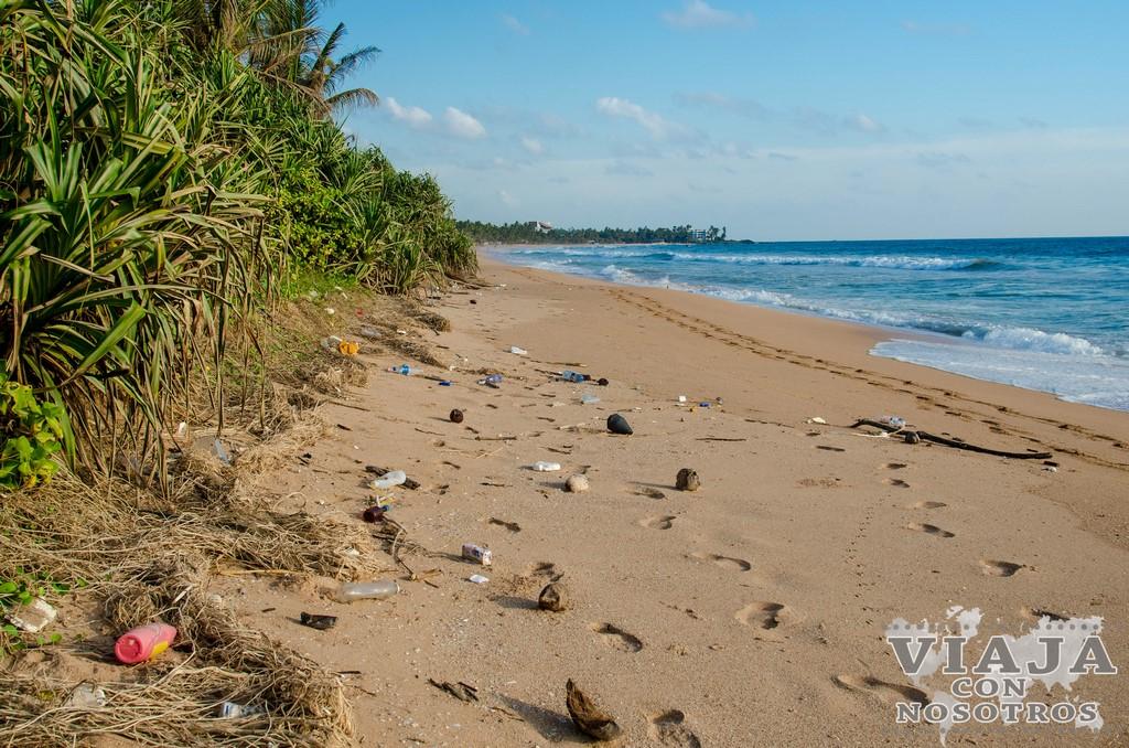 Que playas están mejor en Sri Lanka