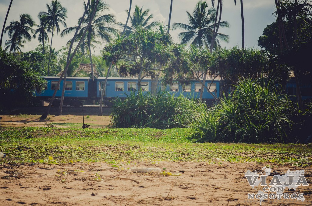 Mejores trayectos de tren en Sri Lanka