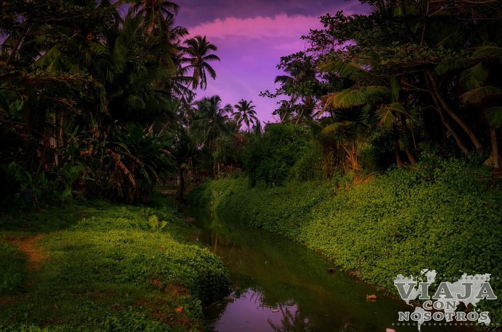 Consejos y recomendaciones para viajar por tu cuenta por Sri Lanka