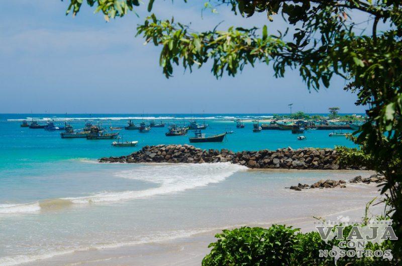 Como fotografiar los pescadores zancudos de Sri Lanka