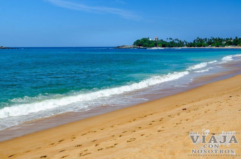 Quieres fotografiar a los pescadores zancudos de Sri Lanka