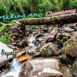 Trekking ABC: Chomrong - Dovan