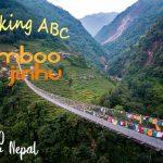 Trekking ABC: Bamboo - Jinhu