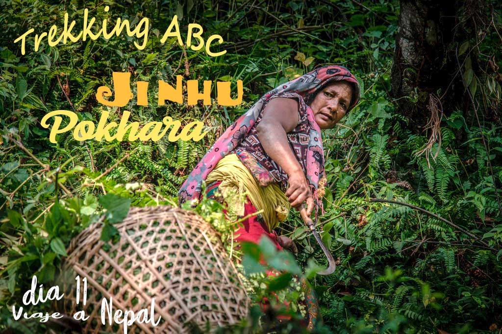 Trekking Annapurnas de Jhinu a Pokhara