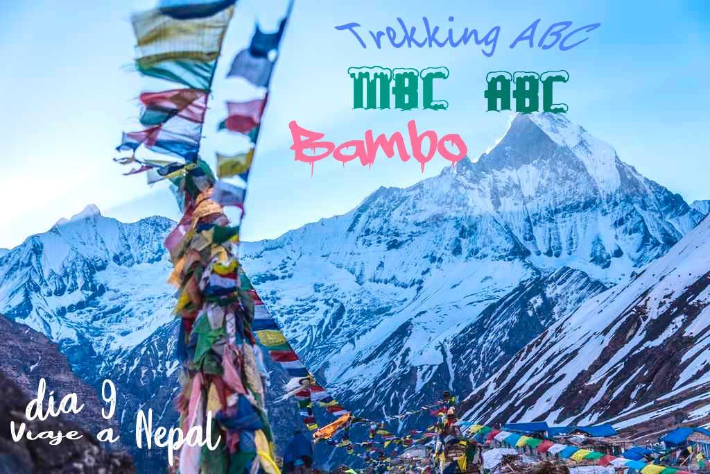 Trekking Annapurnas de MBC a Bamboo