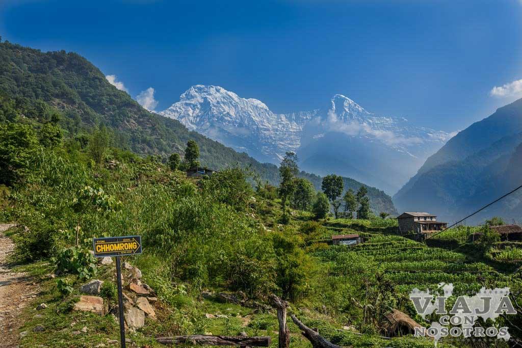 Horario de autobuses de Nayapul a Pokhara