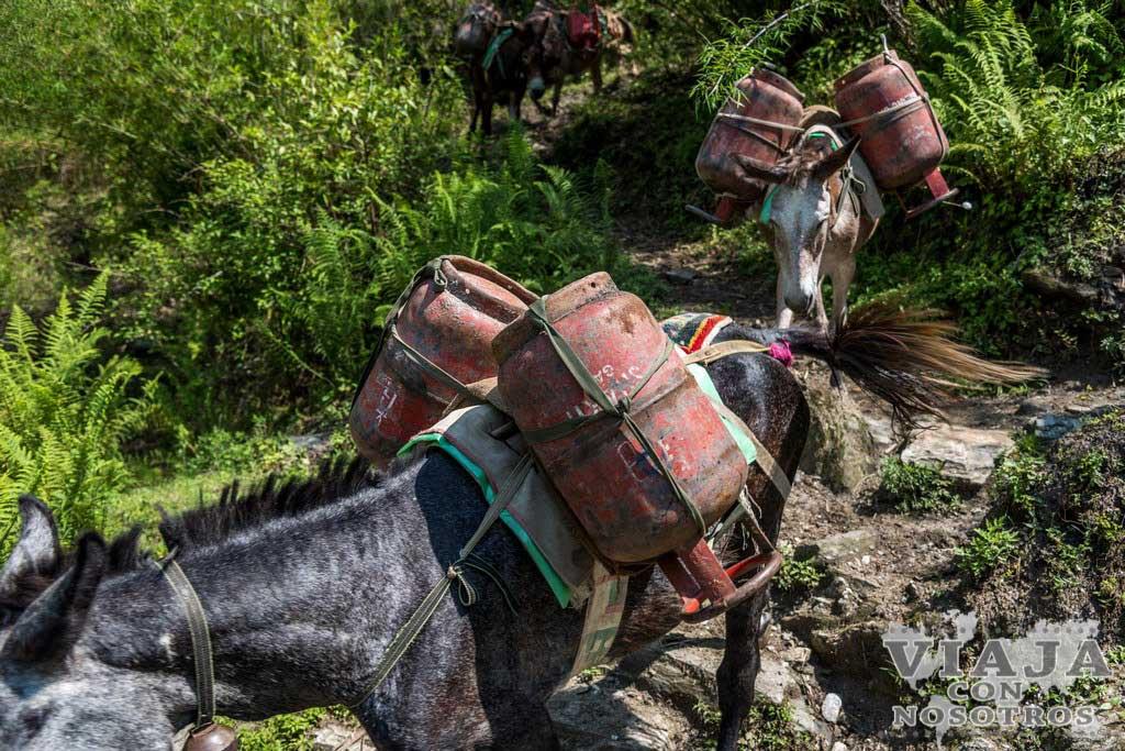 Que etapa es más dura del trekking Annapurnas