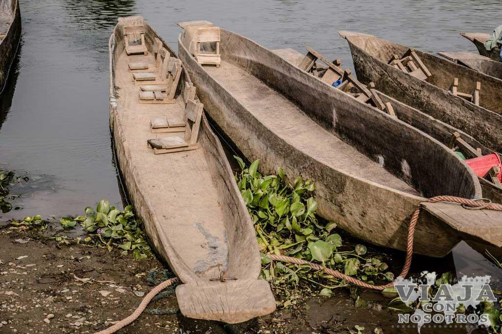 Mejores tours en Chitwan