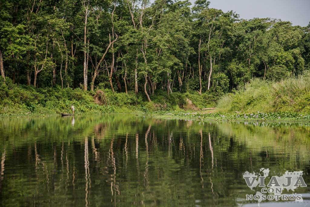 Que animales se ven en el parque de Chitwan