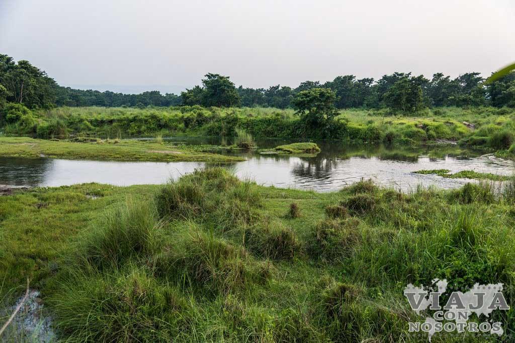 Cuantos días quedarse en Chitwan