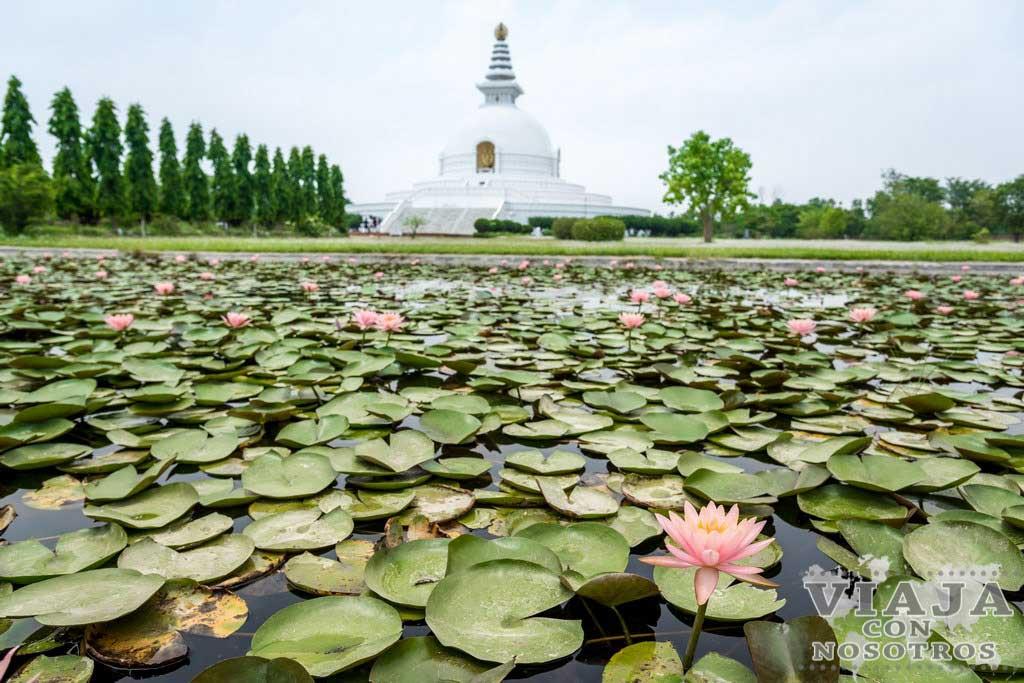 Mejores templos para visitar en Lumbini