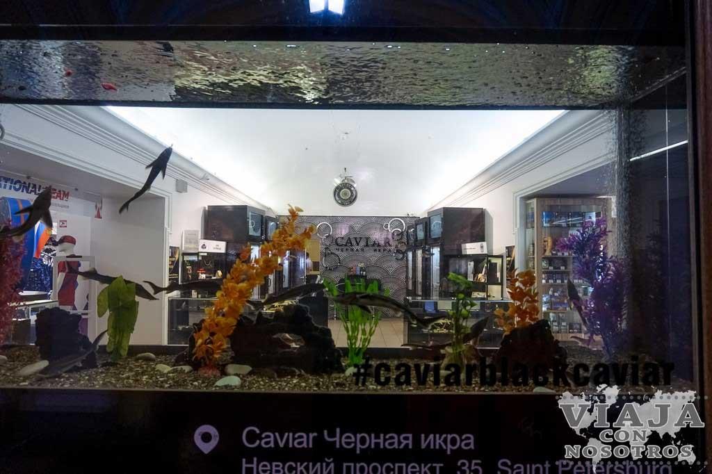 Recomendaciones para comprar caviar en Rusia