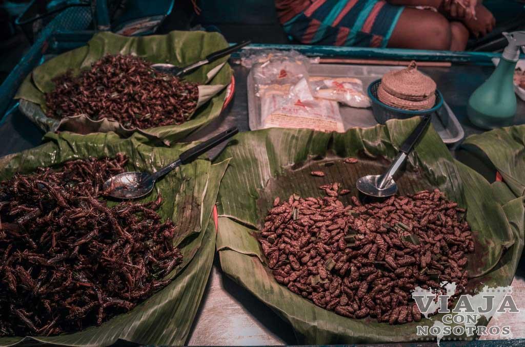 Que países comen insectos