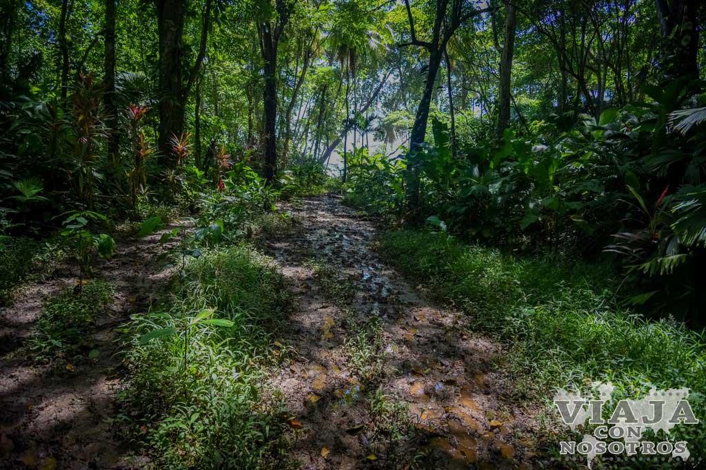 Recorrido del Parque de manzanillo
