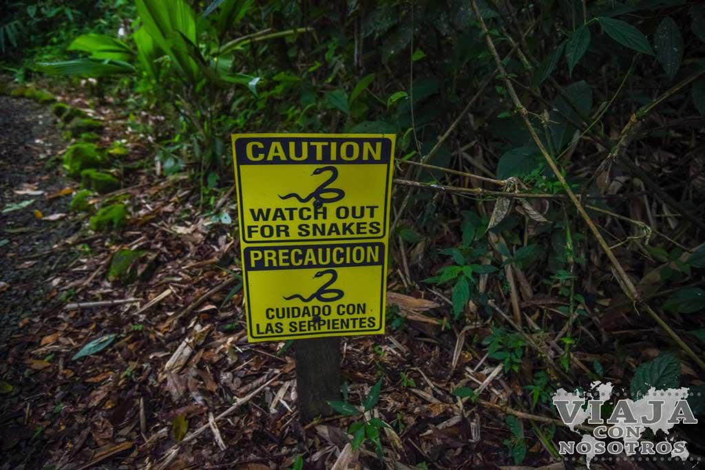 Consejos para visitar la Cascada del Toro