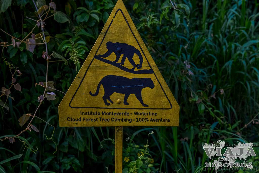 Precaución animales en Costa Rica