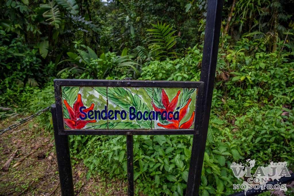 Cuanto tiempo se tarda en Visitar el Parque Braulio Carrillo